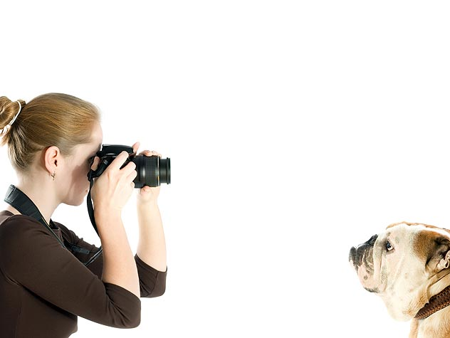 How Photography Can Save Pet's Lives