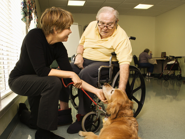animal assisted therapy nursing homes