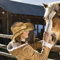 Horses Who Heal