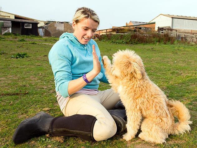 woman teaching a dog hand commands