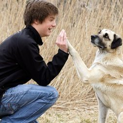 Careers in Animal Behavior – Resources