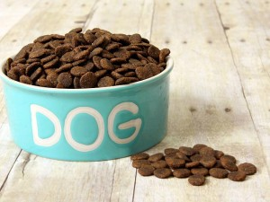Dry dog food calorie counts