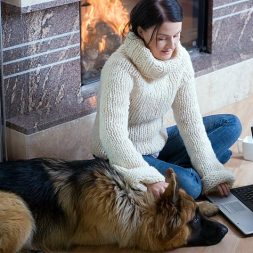 Eight Ways to Discover the Perfect Pet Sitter Online
