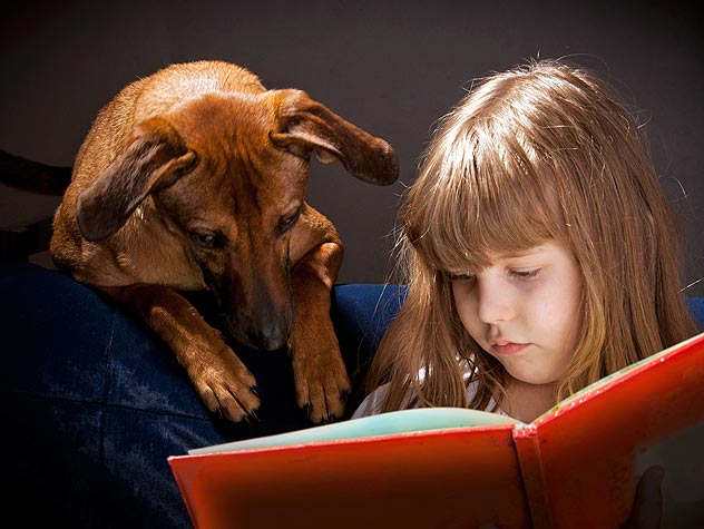 Therapy Dogs and Kids: How They Help