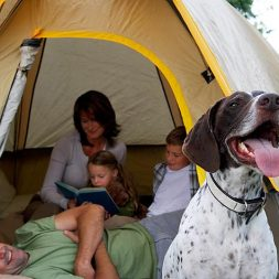 family and their dog camping