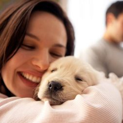 yellow lab puppy with woman