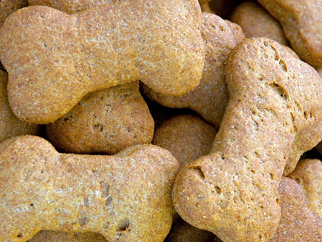 Favorite Dog Treat Recipes