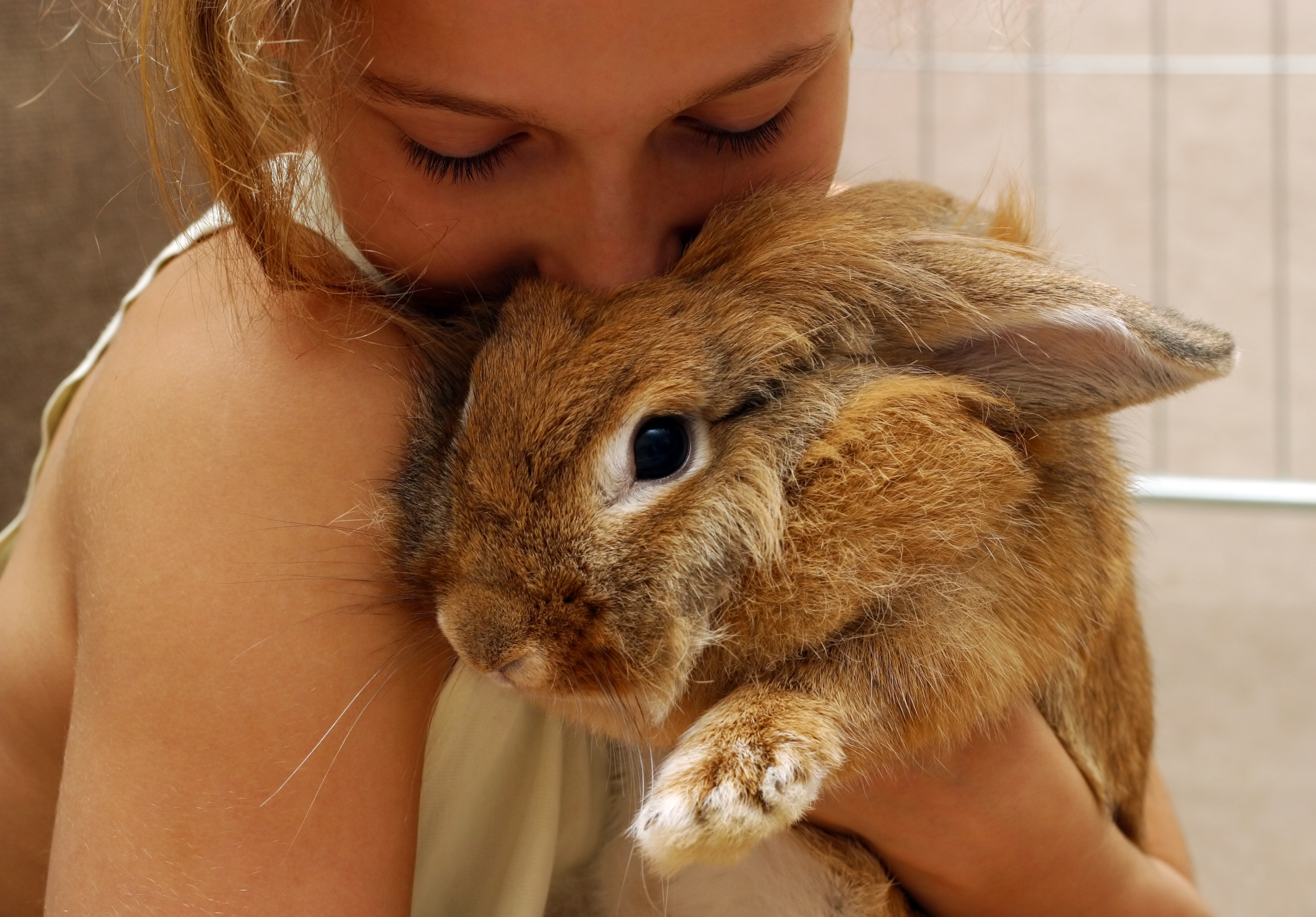 girl cuddling large rabbit