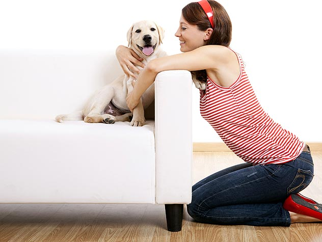woman on the sofa with a dog