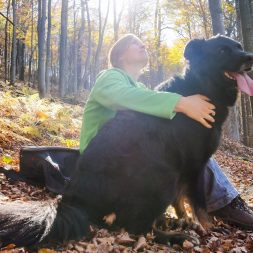 black dog and person in forest