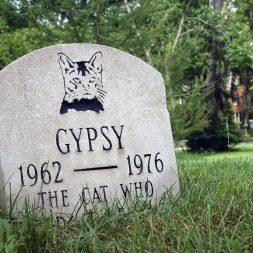 cat headstone