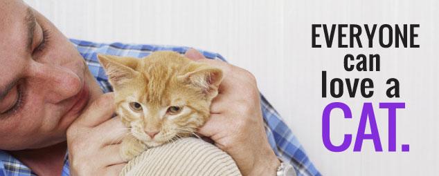 man petting orange cat