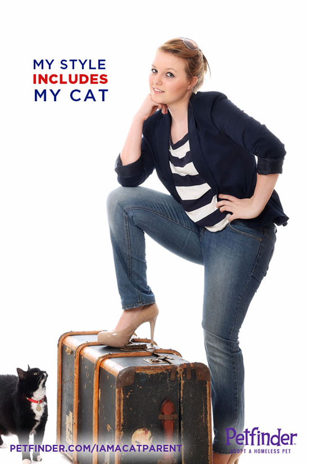 traveling with a cat poster