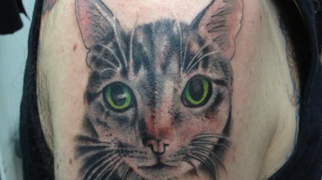 Alley Cat Al