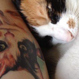 3 color cat tattoo