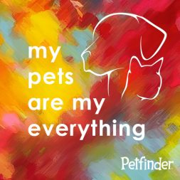 my pets are my everything logo