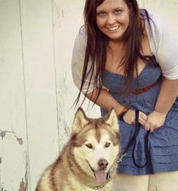 Yukon, an adoptable Husky