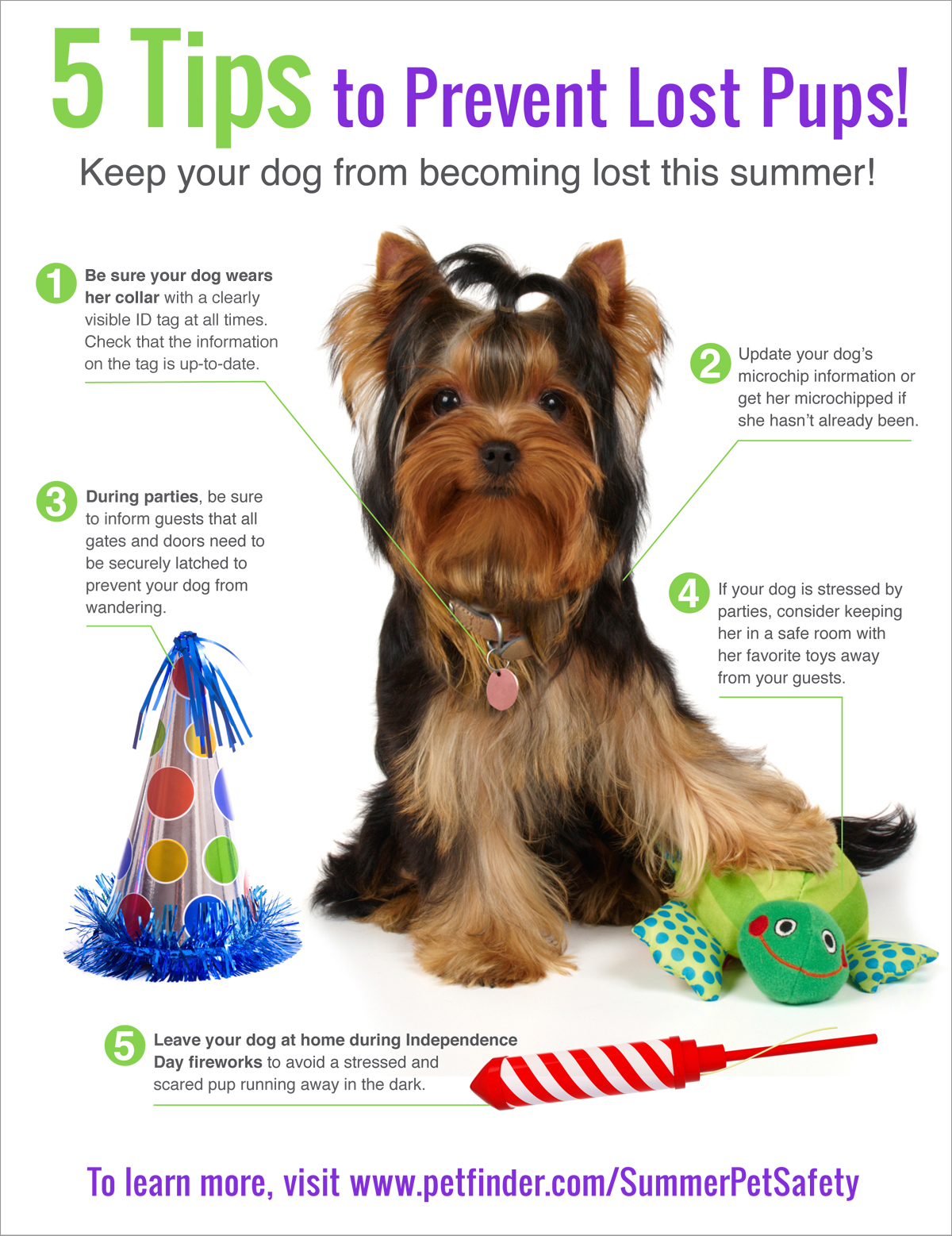 4th july pet safety tips