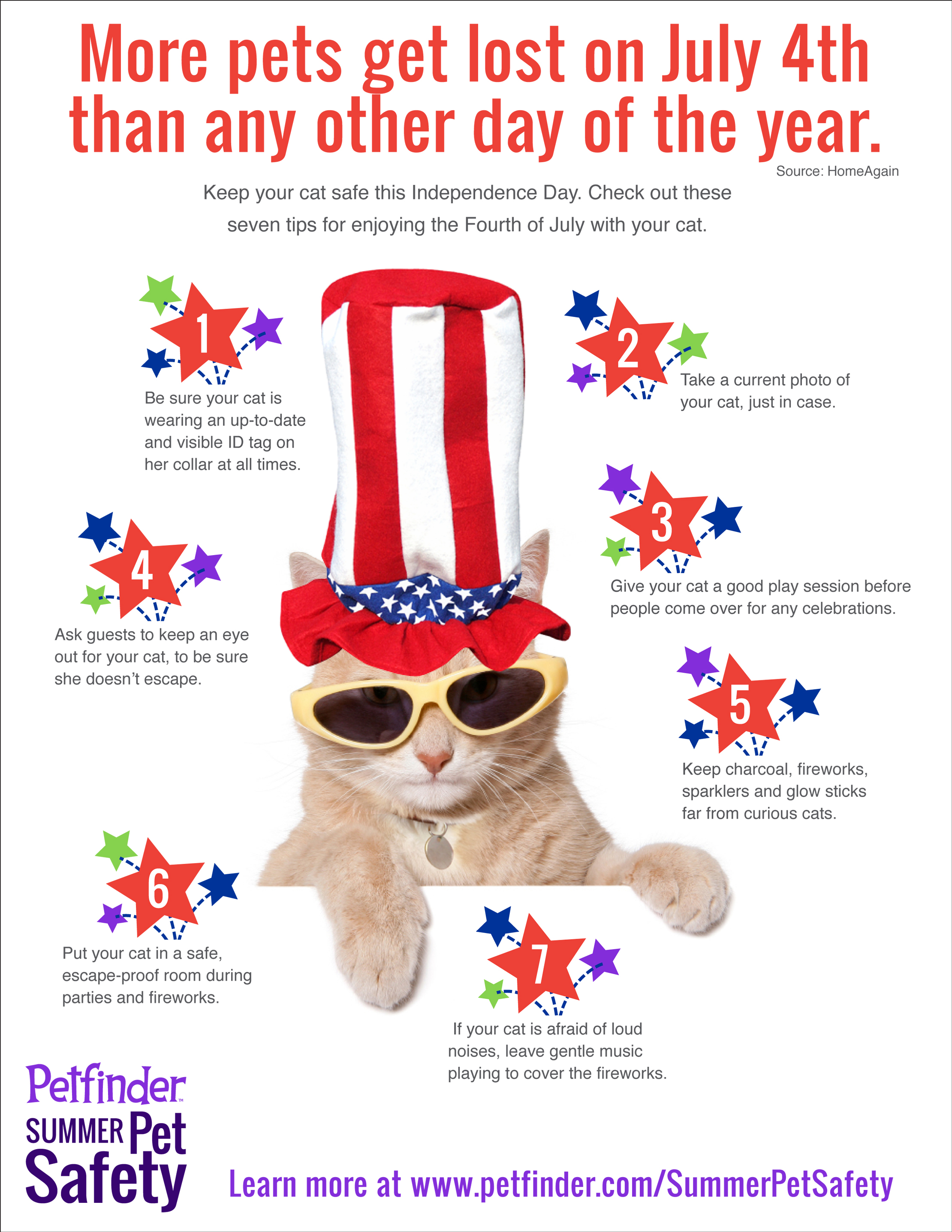 Keep Your Pet Safe on the Fourth of July