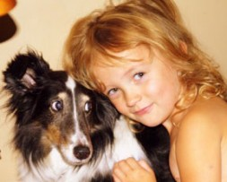 deaf sheltie dog adoption story