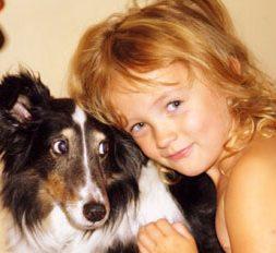 deaf sheltie dog adoption story