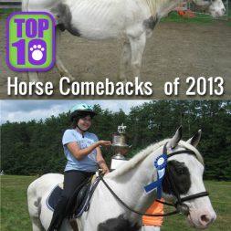Top 10 Horse Comebacks of 2013