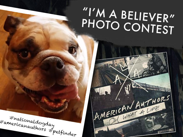 I'm a Believer Photo Contest - Petfinder and American Authors