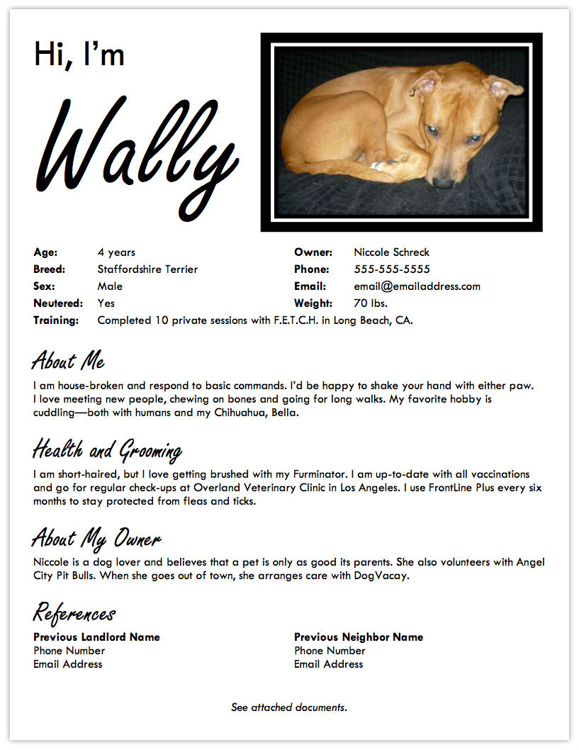 Example Of Pet Groomer Resume