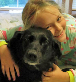 dog-adoption-maddie-rose-