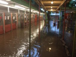 Flooded kennels at Austin Pets Alive!