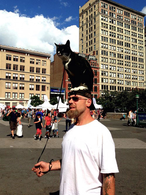 man with a cat sitting on his head
