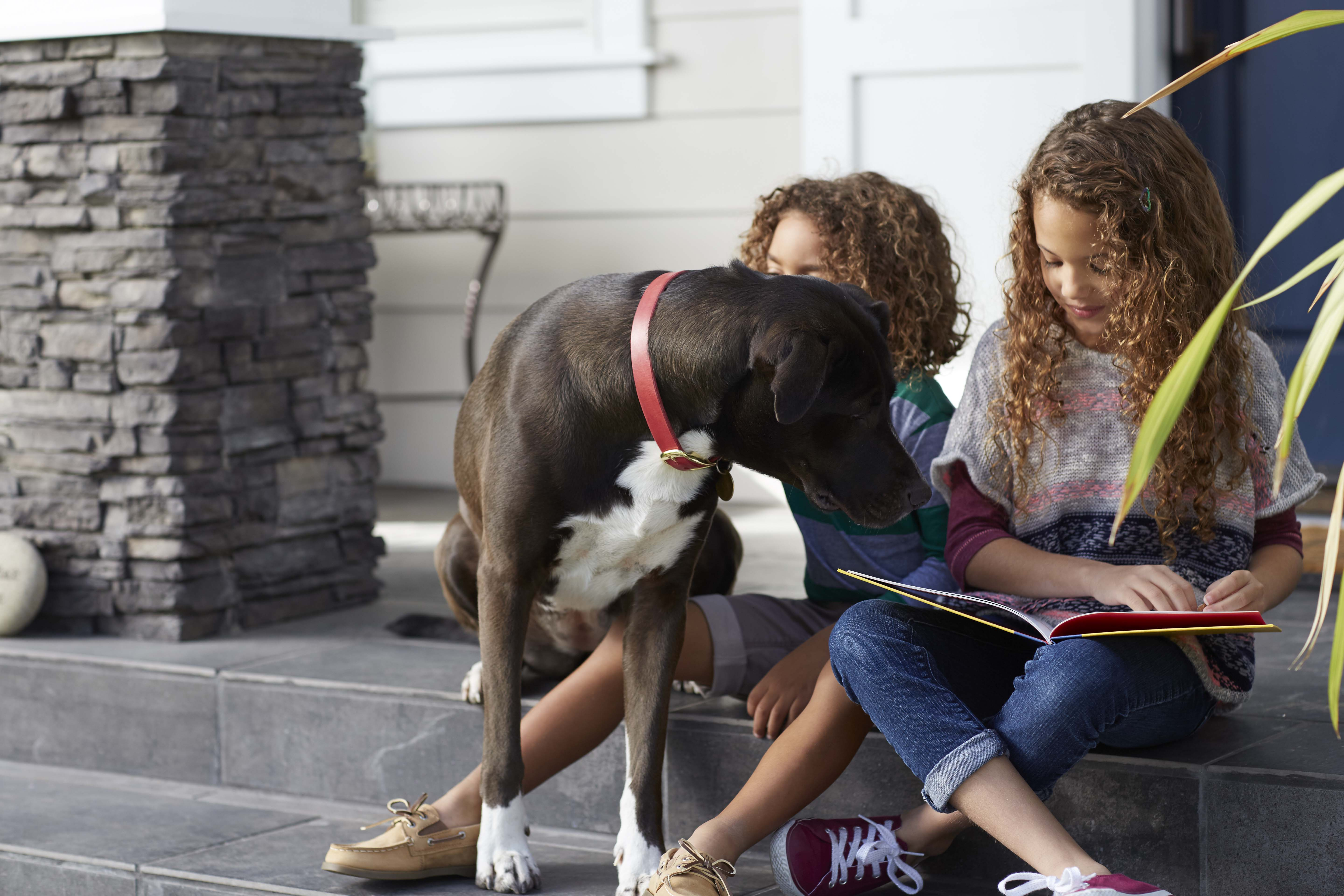 dog-sitting-on-steps-with-kids-reading-book