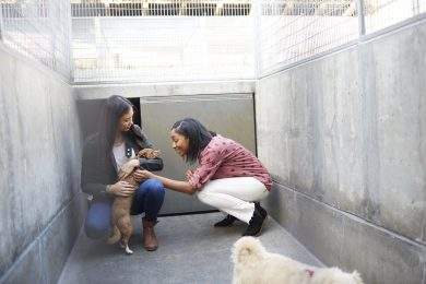 two-women-petting-dogs-in-shelter