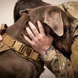 Soldier Hugs Dog