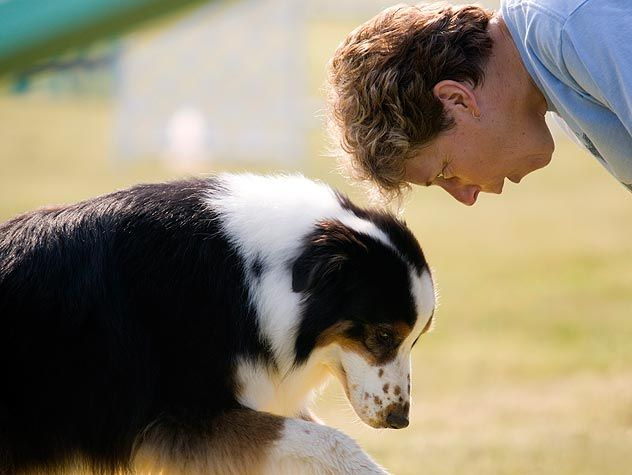 dog with trainer
