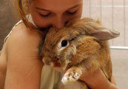 girl kissing bunny